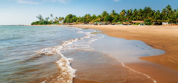 Things to do in Goa - Morjim Beach