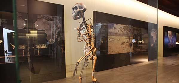 Things to do in Madrid - National Archaeological Museum of Spain