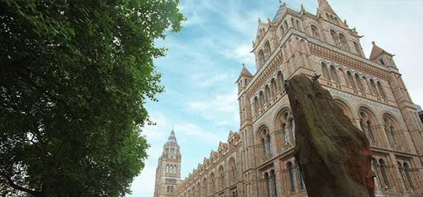 Things to do in London - Natural History Museum