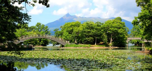Things to do in Hakodate - Onuma Quasi National Park