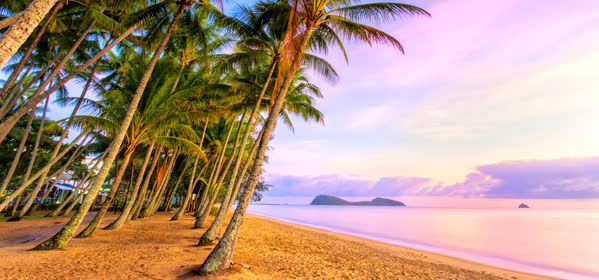 Things to do in Cairns - Palm Cove Queensland