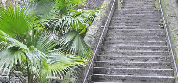 Things to do in Nassau - Queen's Staircase