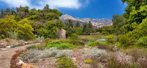 Things to do in Santa Barbara County - Santa Barbara Botanic Garden