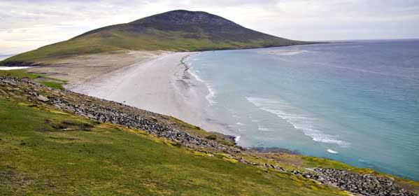 Things to do in West Falkland - Saunders Island
