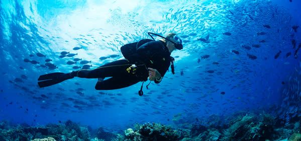 Things to do in Eleuthera - Scuba