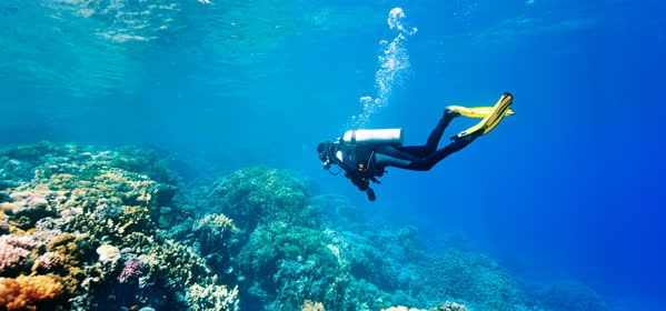 Things to do in Carolina - Scuba and Snorkeling