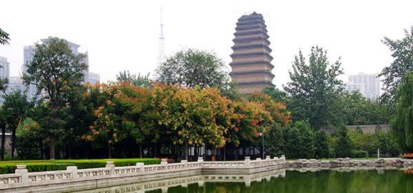 Things to do in Xi'an - Small Wild Goose Pagoda
