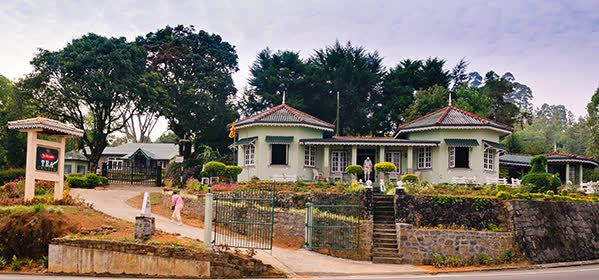 St. Clair's Tea Center