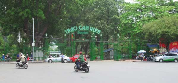 Things to do in Ho Chi Minh - Thao Cam Vien Saigon