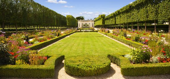 Things to do in Chateau de Versailles - The French Garden