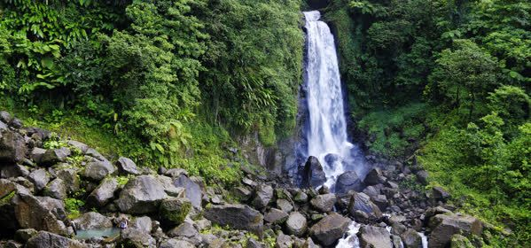 Things to do in Morne Trois Pitons National Park - Trafalgar Falls