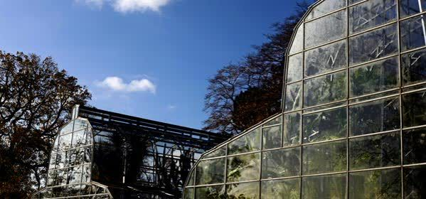 Things to do in Oxford - University of Oxford Botanic Garden