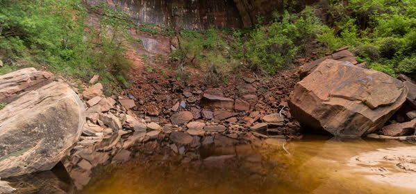 Things to do in Zion National Park - Upper Emerald Pool