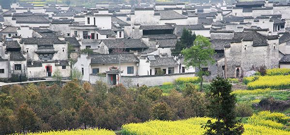Things to do in Huangshan - Xidi village