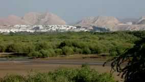 title: Oman Muscat Beauty Shots