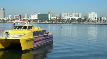 title: Aqualink Water Bus Boat at the Beach
