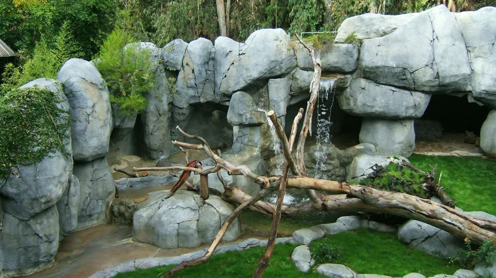 title: Beautiful Scenery and Habitats at San Diego Zoo
