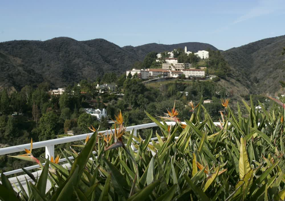 title: Hollywood Views in Los Angeles