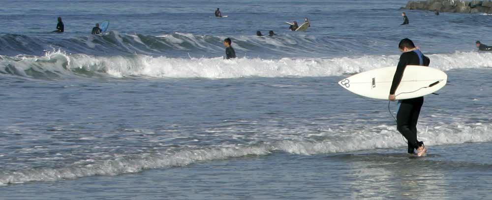 title: Many Surfers Enjoying the Day at the Beach