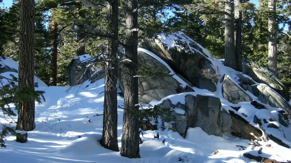 title: Snow on the Rocks in the Forest Mountains at Palm Springs