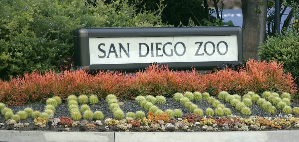 Welcome Plants to the San Diego Zoo Decorations