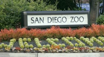 title: Welcome Plants to the San Diego Zoo Decorations