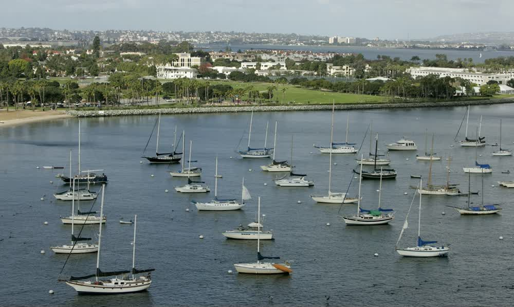 title: White Sailboats on the Waters by the Harbor of San Diego