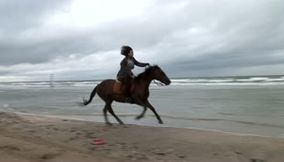 Deauville Horse riding on the beach