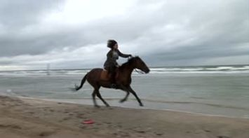 title: Deauville Horse riding on the beach