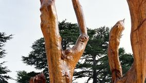 Cool Sculptures Out of Dead Cedar Wood by Rudy Rahmeh
