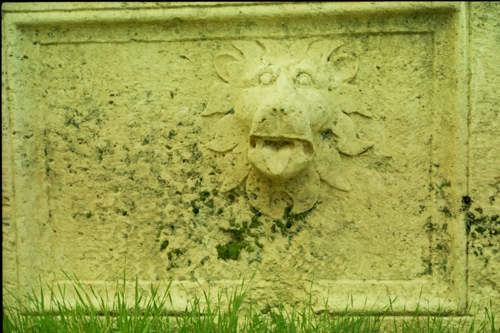 title: Lion Carved in Old Stone Ruins