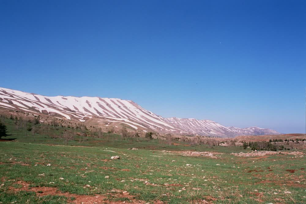 title: Lovely Natural Beauty of Mount Lebanon Forests