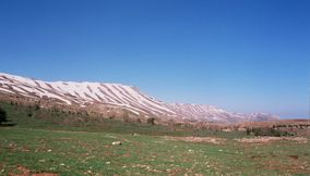 Lovely Natural Beauty of Mount Lebanon Forests