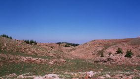 Natural Mountain Area of the Cedars of Lebanon