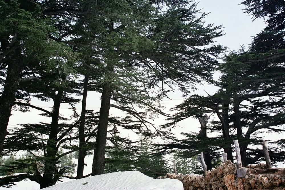 title: Snow in the Spring Holidays in Al Arz Bcharreh