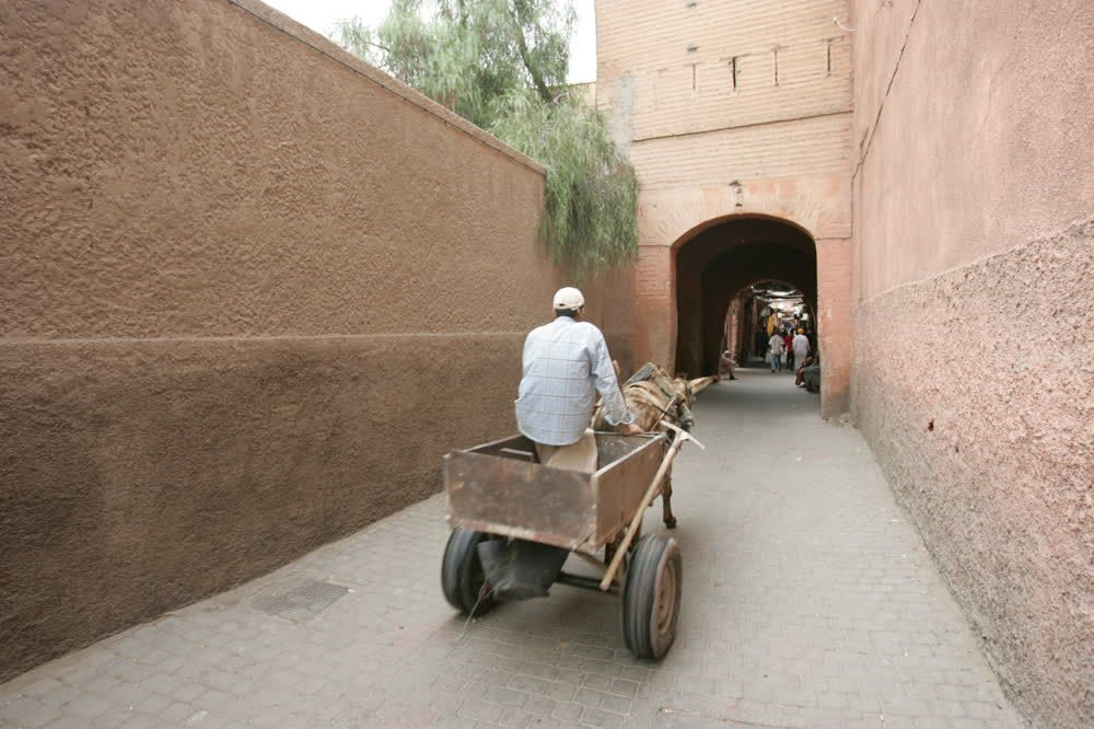 title: Donkey Cart Ride in the Old Souks of Marrakesh