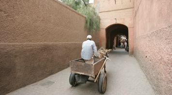Donkey Cart Ride in the Old Souks of Marrakesh