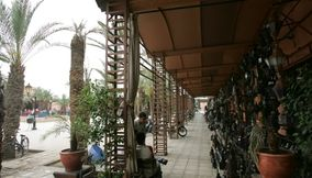 title: Lantern and Light Shop in Marrakesh