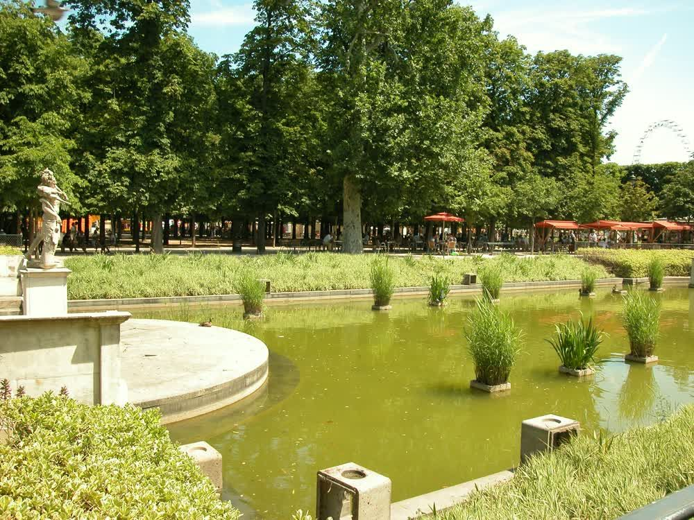 title: Pretty Fountain at the Jardin des Tuileries in Paris