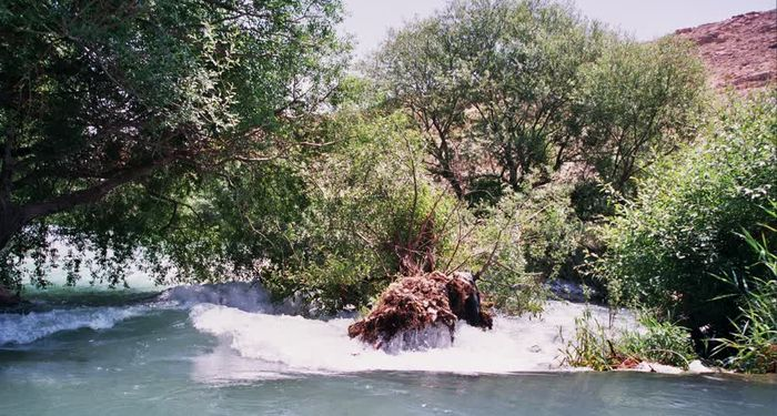title: Waters of Al Assi River