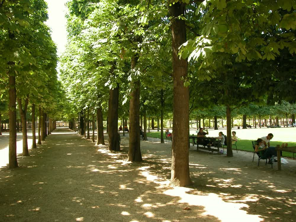 title: Alleys at Jardin des Tuileries