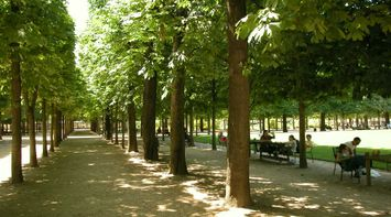title: Walking Paths and Alleys at Jardin des Tuileries
