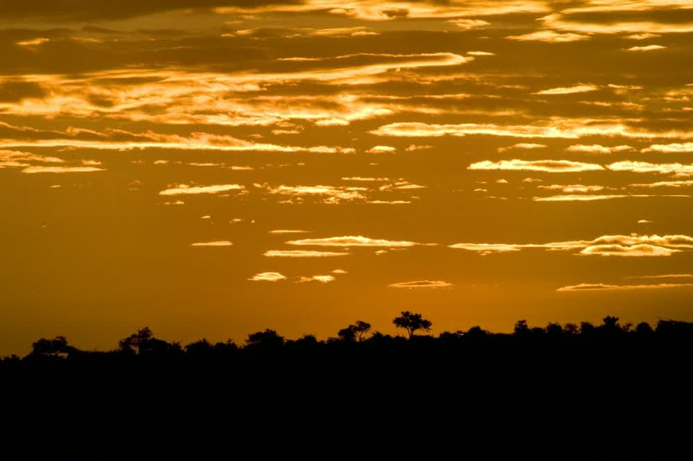 Amazing sunset with an orange sky Northern Tuli Game Reserve Botswana