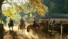 title: Horseback riding CHILE Sports Adventure