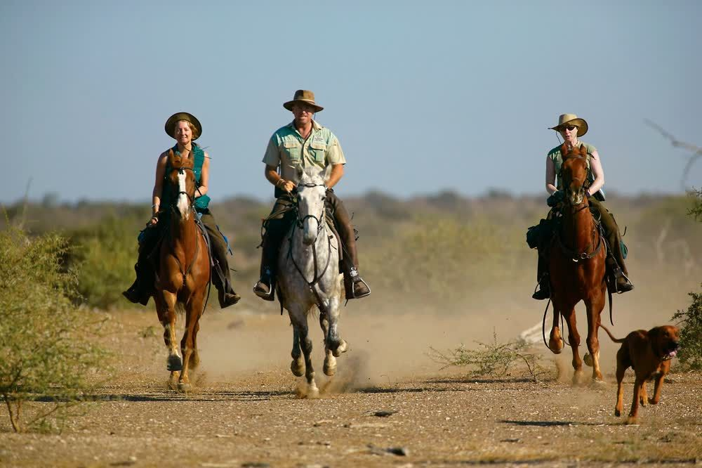 title: On horses in Northern Tuli Game Reserve Botswana
