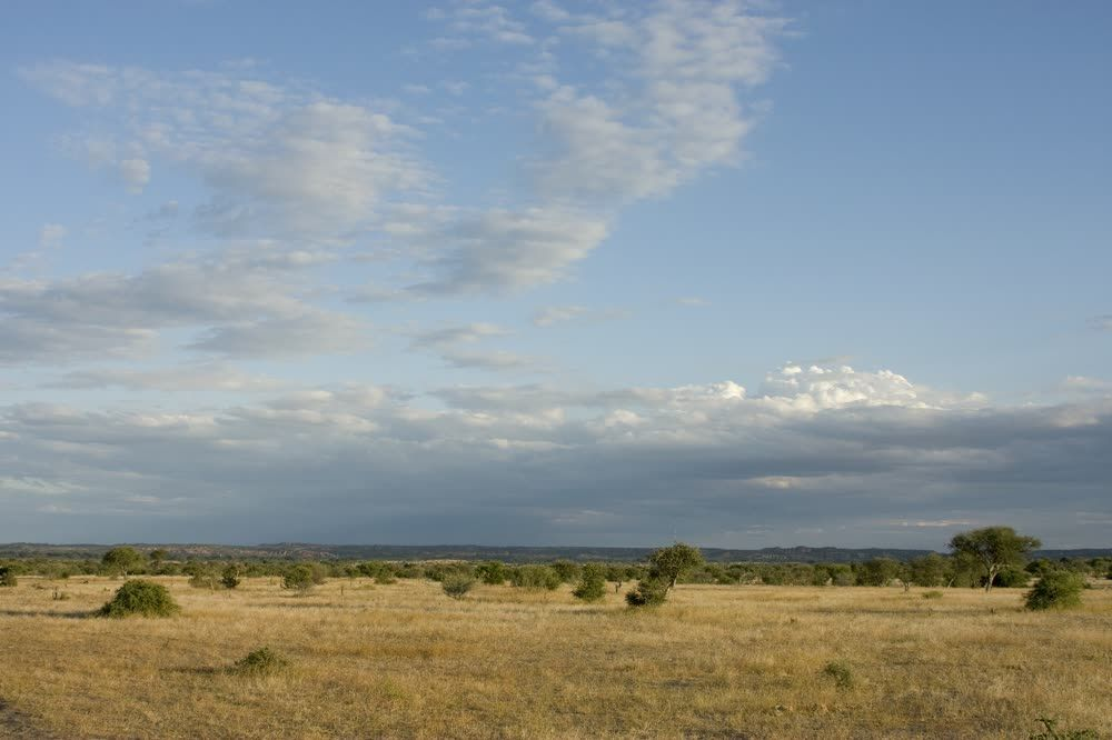 Panoramic view Northern Tuli Game Reserve Botswana