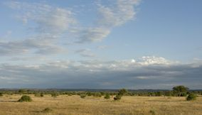 title: Panoramic view Northern Tuli Game Reserve Botswana