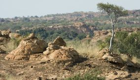 title: Rugged hill Northern Tuli Game Reserve