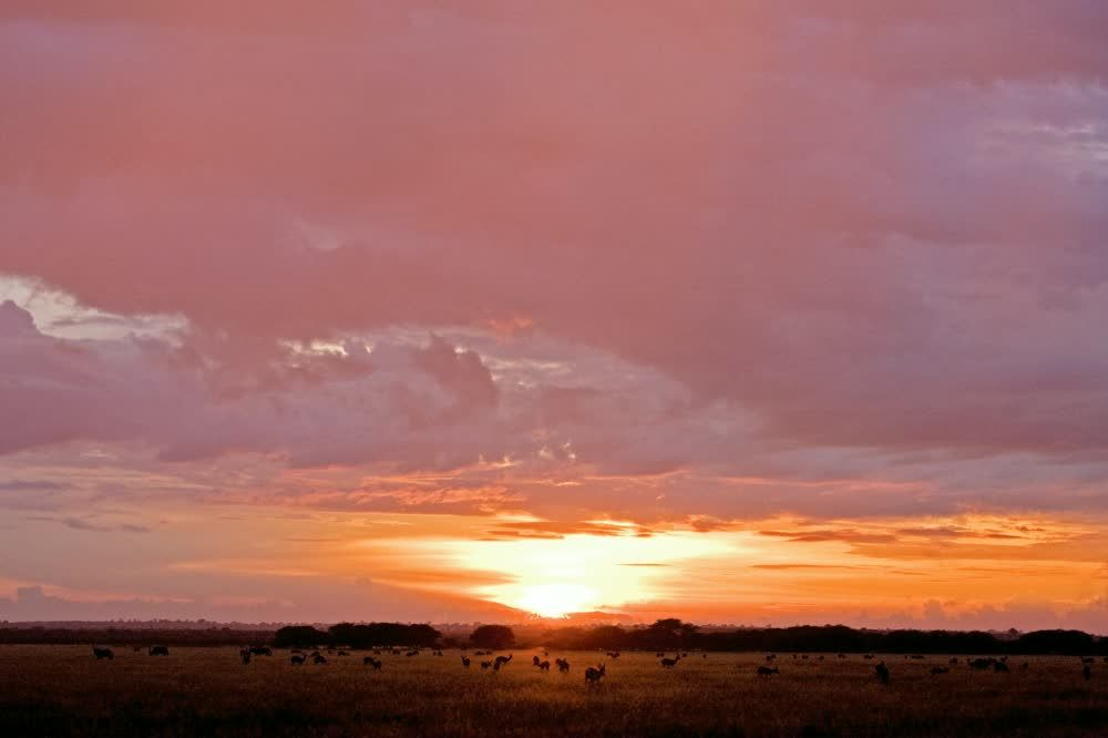 title: Sunset in Central Kalahari Game Reserve