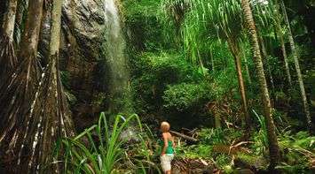 Woman Waterfall Valle De Mai Seychelles